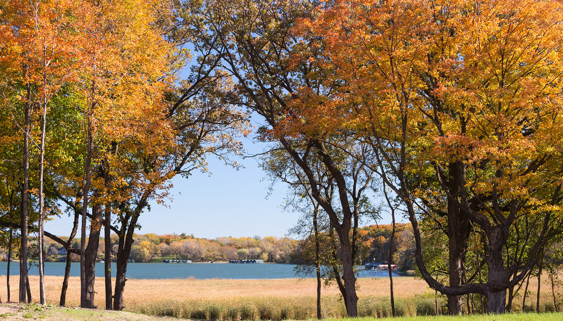 Fall trees and Lake Minnetonka